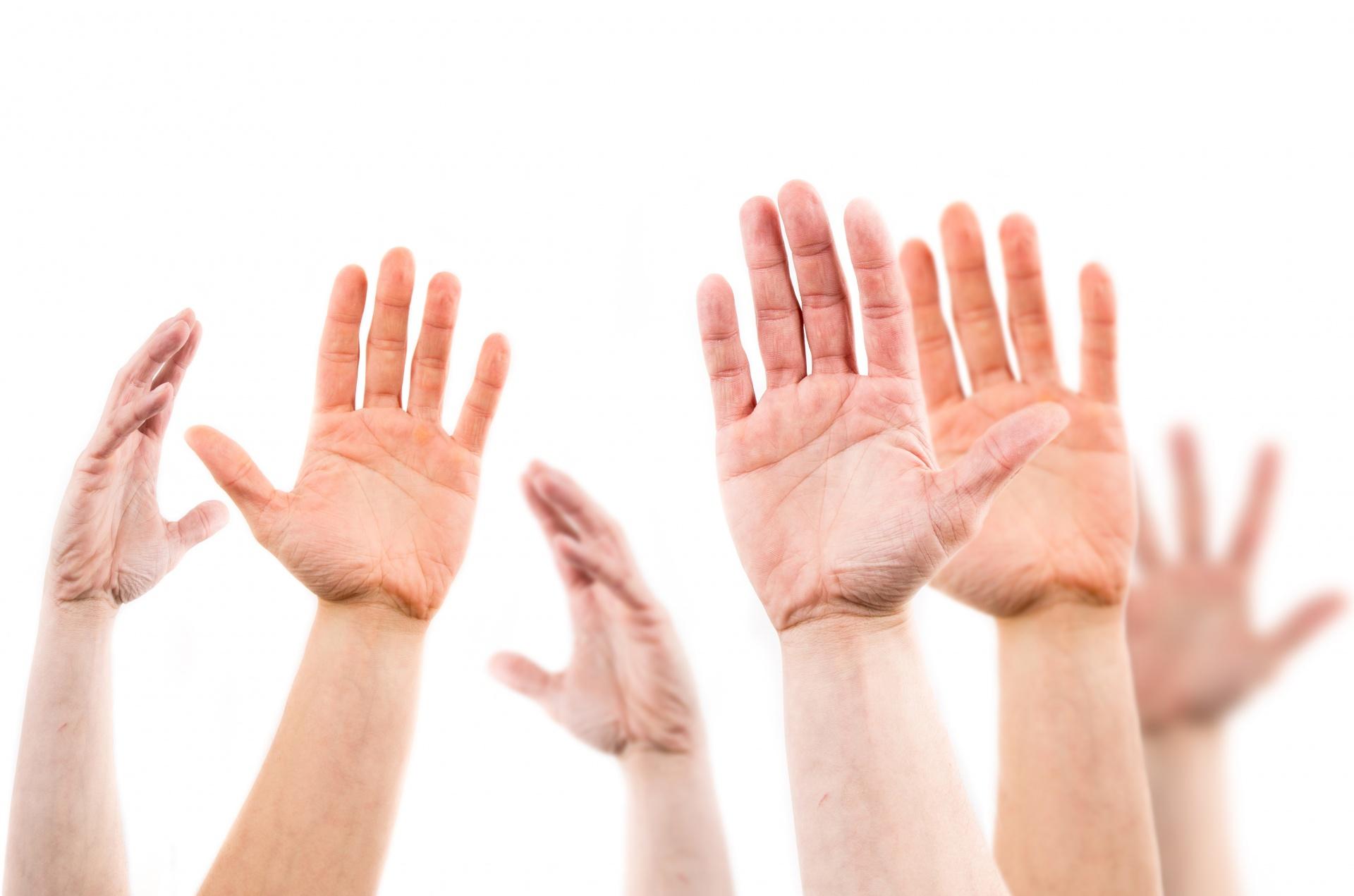 seven hands asking questions