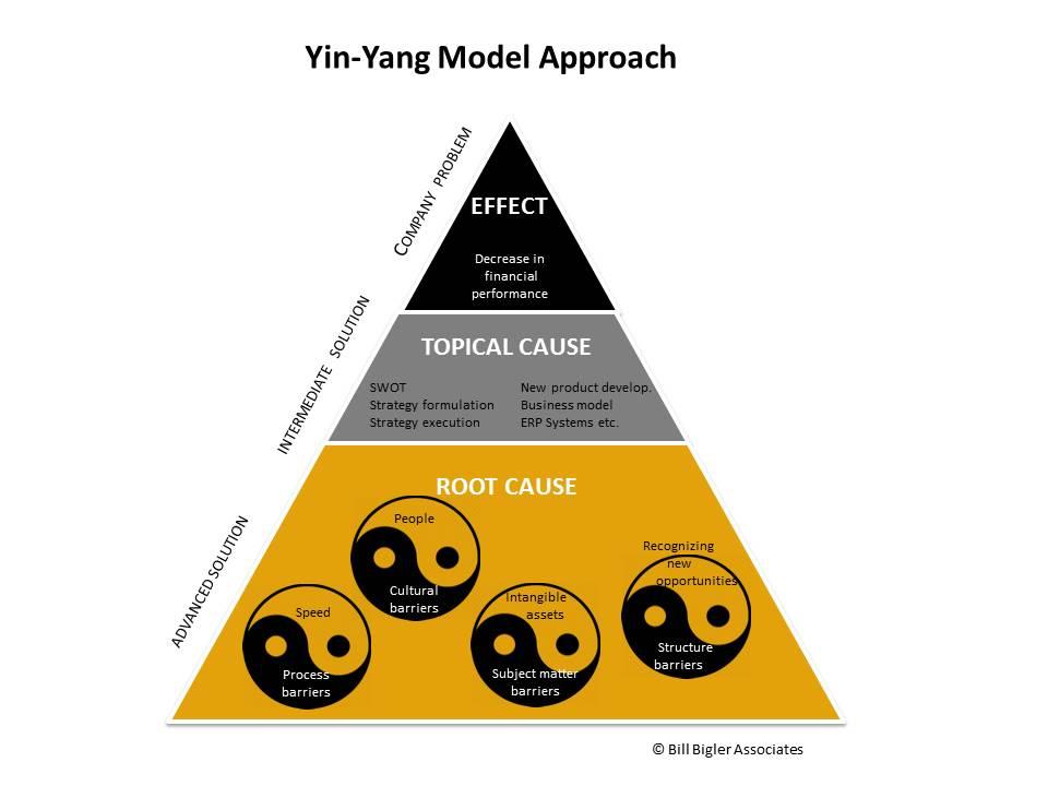 yin-yang-model